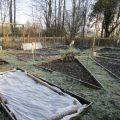 Календарь садовода. Март: сад огород.