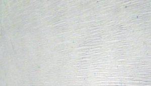 Подложка под обои марки Экохит (EcoHeat), общий обзор в фото