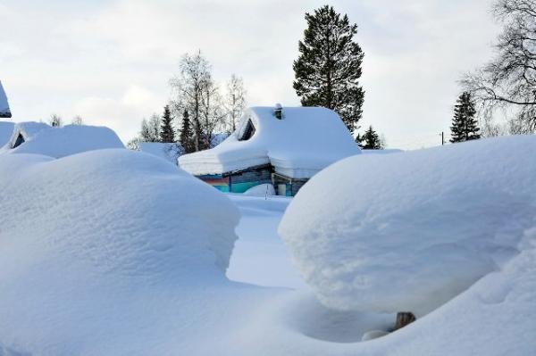 Польза и вред снега на даче