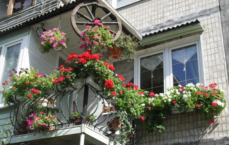 Уникальный интерьер балкона: фотогалерея, современное оформление в фото