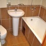 dizajn-vannoj-sovmeshhennoj-s-tualetom-01