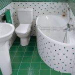 dizajn-vannoj-sovmeshhennoj-s-tualetom-02