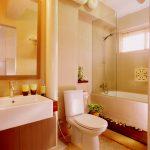 sinming hdb toilet bathroom design